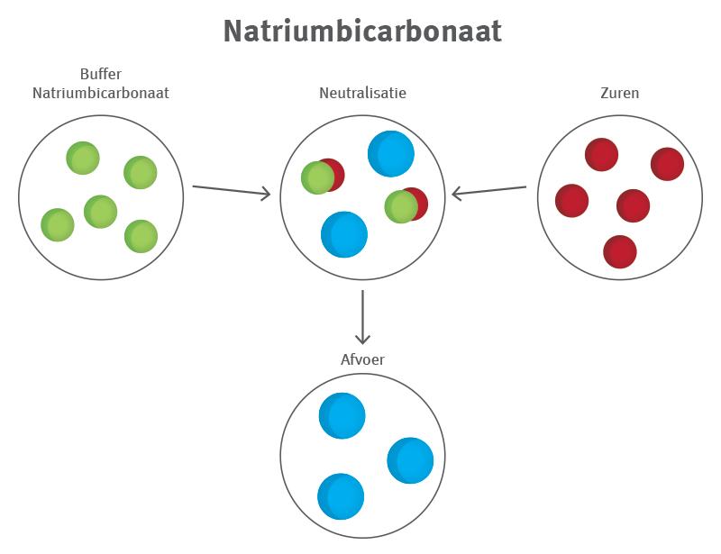 Natrium - ontzuren - lichaam