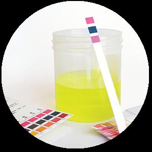 pH waarde - zuurgraad -testmomenten